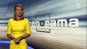 Anja Reschke, la « présentatrice allemande» dirige en fait le service Politique Intérieure et notamment l'émission Panorama de la chaîne NRD.